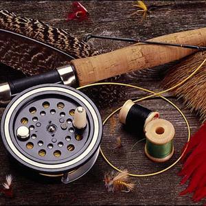 Охотничьи и рыболовные магазины Аликово